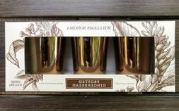 Williams Sonoma Frosted Gingerbread Votive Candles Gift Set