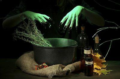 witches brew fragrance oil candle soap making
