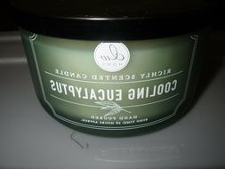 NEW DW Home Cooling Eucalyptus Hand Poured Candle burns 26 h