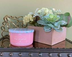 *NEW* DW Home SALTWATER TAFFY Candle - Burn Time 26 Hours
